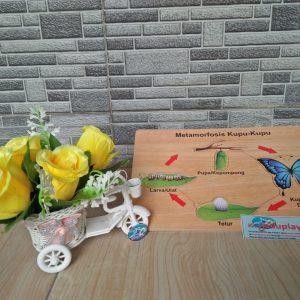 Mainan Edukasi Puzzle Metamorfosa Kupu-kupu